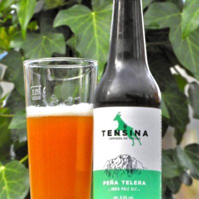 Cerveza Tensina IPA