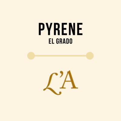 Cerveza Artesana Pyrene